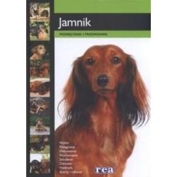 Macromedia Flash 8...